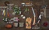 Opinel N Degree8 Boxed Garden Knife, 8.5 cm Blade