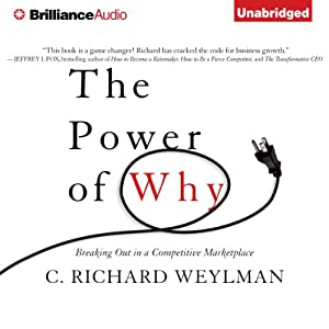 The Power of Why Audiobook