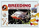 A Practical Guide to Breeding Your Freshwater Fish, Derek Lambert, 1903098033
