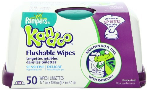 Pampers Kandoo Flushable Wipes, Sensitive, 900 Wipes