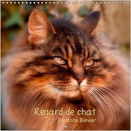 Regard de Chat: Toute L'intensite du Regard d'un Chat (Calvendo Nature)