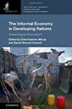 img - for The Informal Economy in Developing Nations: Hidden Engine of Innovation? (Intellectual Property, Innovation and Economic Development) book / textbook / text book