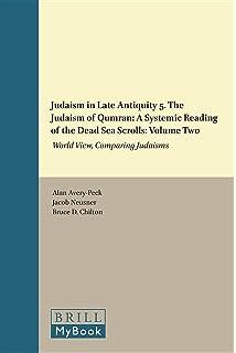 The Mishnah: Religious Perspectives (Handbook of Oriental Studies - Handbuch der Orientalistik)