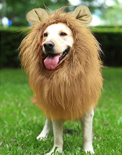 Lion Costume For Big Dogs (Azorcol Lion Mane Costume Big Dog Lion Mane Wig Hairpiece with Ears (Light Brown))