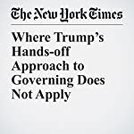 Where Trump's Hands-off Approach to Governing Does Not Apply | Ben Protess,Danielle Ivory,Steve Eder