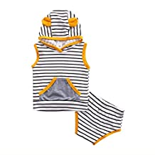Baby Boy Girl Fox Sleeveless Stripe Hoodie Pullover with Pocket+ Short Pants Outfit