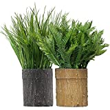 MIXROSE Artificial Plants Fern Fake Shrubs Bushe 11'' Height in Handmade Textured Paper Pot Greenery Grass Indoor Home and Bathroom Decor 2 Packs
