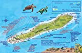 Cayman Brac Island Dive Map and Reef Creatures Guide Franko Maps Laminated Fish Card