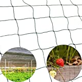 Mcage 50' X 100' Net Netting for Bird Poultry Aviary Chickens Game Pens