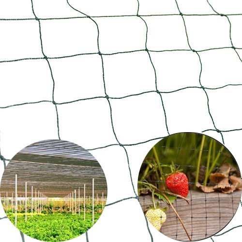 50' X 50' Net Netting for Bird Poultry Aviary Chickens Ga...