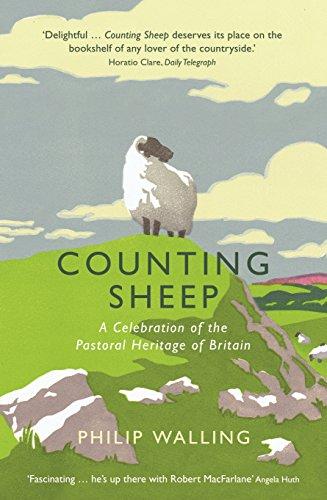 Counting Sheep (Counting Sheep)