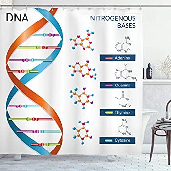 Ambesonne Educational Shower Curtain, DNA Bases Chemistry Biochemistry Biotechnology Science Spiral Genetic, Cloth Fabric Bathroom Decor Set with Hooks, 70