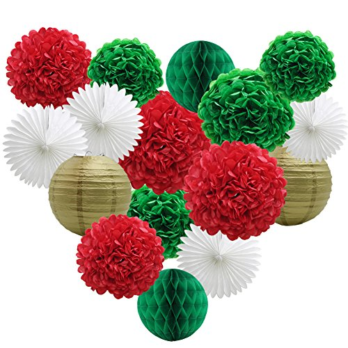 Party Decorations Kit, Green Red White Birthday Bridal Shower Decor Paper Pom Poms Flowers Honeycomb Balls Lanterns Paper Tissue Fans Photo Backdrop Wedding Christmas Bachelorette Supplies ()