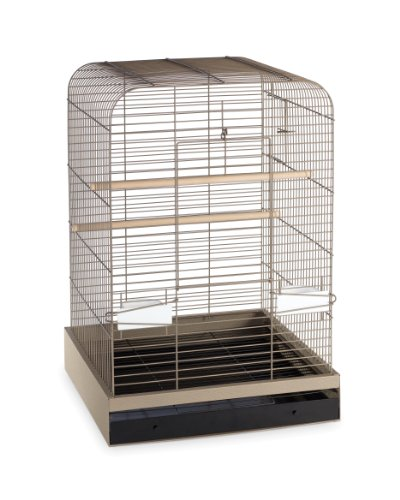 Prevue Hendryx 124PUT Pet Products Madison Bird Cage, Putty,5/8″