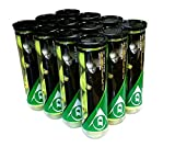 Dunlop John McEnroe Championship All Court Tennis Balls (12 tubes of 4 balls)