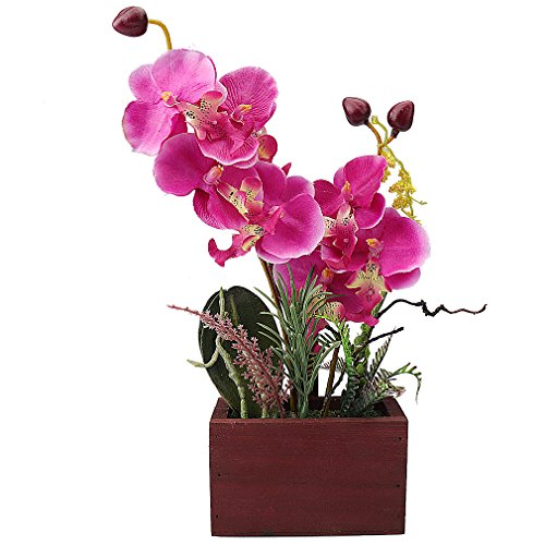 RERXN Phalaenopsis Bonsai Artificial Orchid Arrangement with Wooden Flowerpot Home Office Windowsill Decor - Lindas Shop Flower