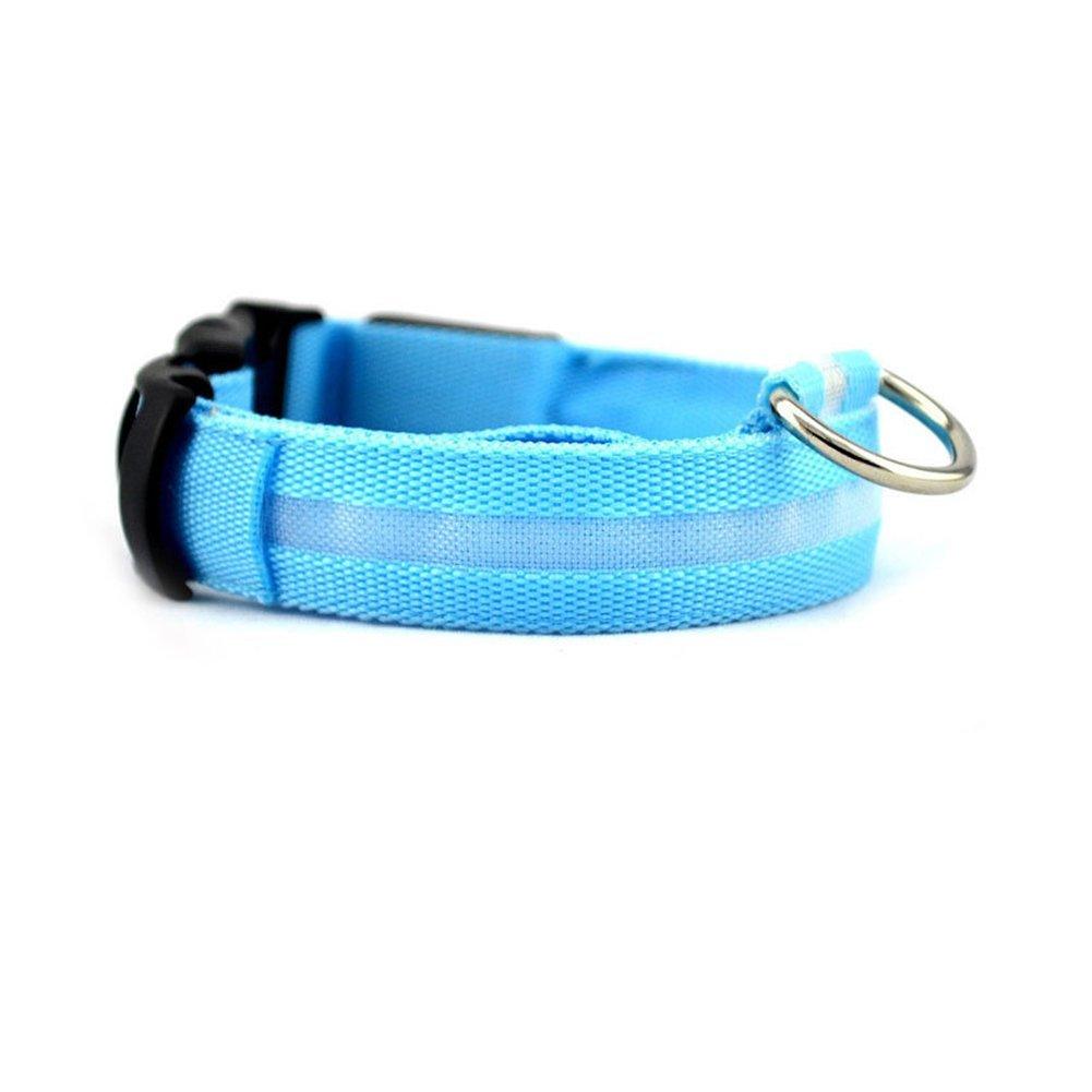 Da.Wa Collar Para Mascotas Suministros de Mascotas Collar Ligero de LED