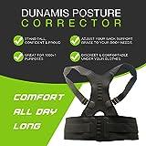 Posture Corrector: Lumbar Support Belt for Back