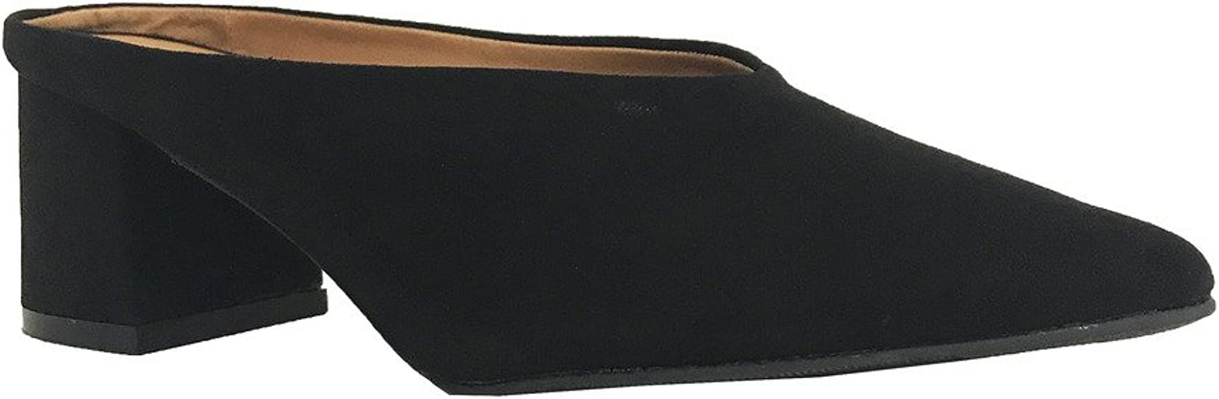 Pointed Toe Suede Chunky Heel Slip