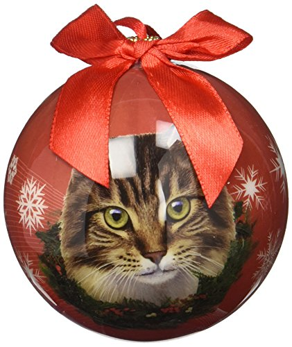 Maine Coone Cat Christmas Ornament Shatter Proof Ball Easy To Personalize A Perfect Gift For Maine Coone Cat Lovers 51K261t7HkL