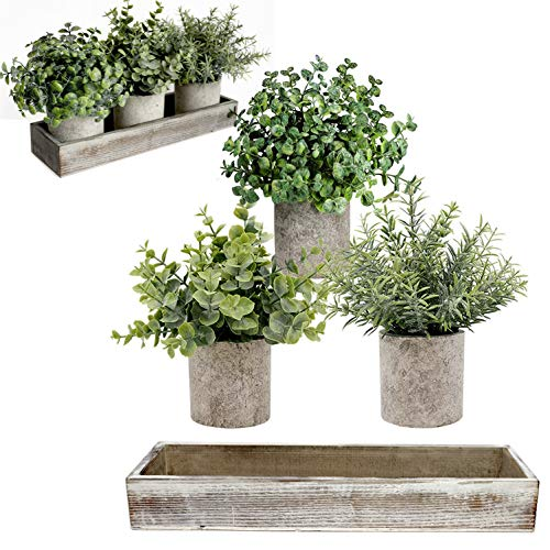 Mini Potted Artificial Plants – Artificial Eucalyptus Plant, Rosemary, Boxwood with Rustic Planter Box – Farmhouse…