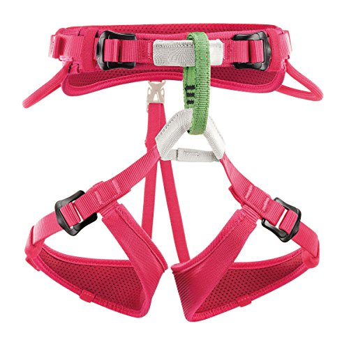 Best Value for Money Climbing harness