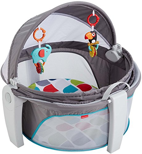 (Fisher-Price On-the-Go Baby Dome, Grey/Multi-Color [Amazon Exclusive])