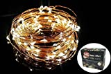 Home Effort 100 LED Copper Wire Starry String Lights with 5V US Plug Adapter, 33-Feet, Warm White