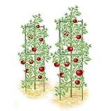 Dremengo 2pcs Tomato Cages Garden Plant Support Stakes Trellis Climbing Flowers Vegetables