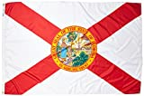 Annin Flagmakers Model 140970 Florida State Flag 4×6 ft. Nylon SolarGuard Nyl-Glo 100% Made in USA to Official State Design Specifications.
