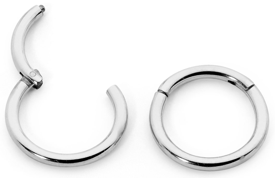 365 Sleepers 1 Pair Stainless Steel 1/4 (6mm) TINY 16G Hinged Segment Ring Silver Black Rose Yellow Rainbow Blue Hoop Sleeper Earrings Body Piercing 365 Slepers 365ST6
