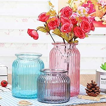 Green 3 S verre Tonpot Rayures verticales conteneurs de bouteille en verre Plante Vase en verre Transparent D/écoration Home Decor Shop Accessoires
