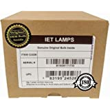 Replacement Lamp Assembly with Genuine Original OEM Bulb Inside for EPSON V13H010L69, ELPLP69 Projector (Power by Osram)
