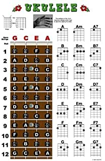 Ukulele Fretboard And Chord Chart Instructional Poster Uke