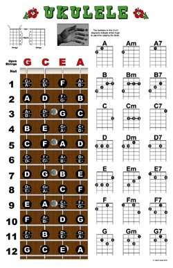 Ukulele ukulele chords poster : Amazon.com: Ukulele Fretboard and Chord Chart Instructional Poster ...