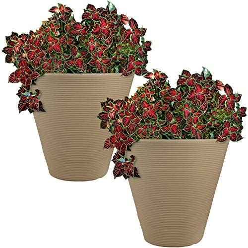 Sunnydaze Walter Flower Pot Planter, Outdoor/Indoor Heavy-Duty Double-Walled Polyresin, Fade-Resistant Antique White Finish, Set of 2, 16-inch Diameter