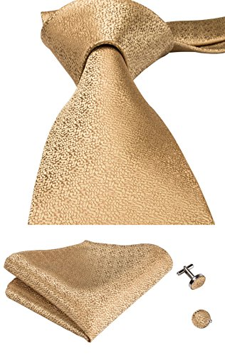 CAOFENVOO Gold Solids Silk Tie Formal Wedding Necktie