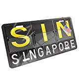 Metal License Plate SIN Airport Code for Singapore - Neonblond