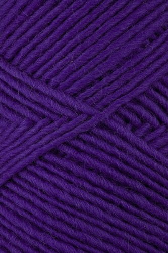 Brown Sheep - Lambs Pride Worsted Knitting Yarn - Violet Fields (# 161)