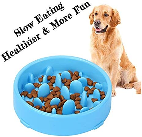 XZQTIVE Slow Feeder Dog Bowl