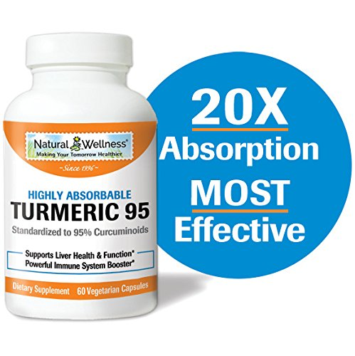 Turmeric 95, by Natural Wellness, offers a highly absorbable Turmeric and BioPerine® combination – 60 vcaps Review