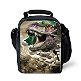 HIMI Fashion Lunch Tote Box with Shoulder Strap Reusable Snack Containers with Zippers for Kids 3D Print Dinosaur