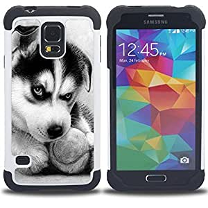 - Huskies Husky Dog Paws Cute - - Fulland Deluxe Hybrid TUFF Rugged Shockproof Rubber + Hard Case Cover FOR Samsung Galaxy S5 I9600 G9009 G9008V Queen Pattern