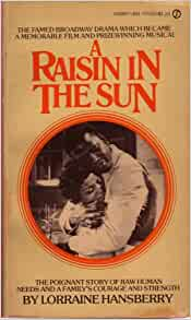 book review raisin through the particular sun