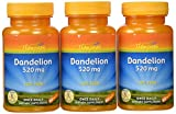Thompson Dandelion Root Capsules, 520 Mg, 60 Count (Pack of 3)