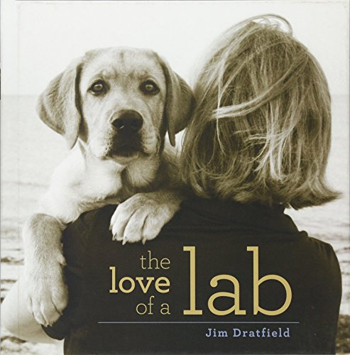 - The Love of a Lab
