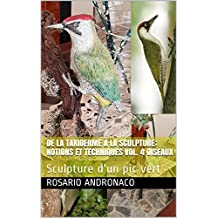 DE LA TAXIDERME À LA SCULPTURE: NOTIONS ET TECHNIQUES VOL. 4 OISEAUX: Sculpture d'un pic vert (Dalla Tassidermia alla Scultura t. 1) (French Edition)