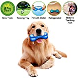 Nasus Pet Dog Cooling Chew Toy, Puppy Dog Summer Intelligence Puzzle Thirst Quench Hydro Freezable Fun Rubber Play Training Toy with Bones Shape Design for Teething and Small, Medium Pet Chewers