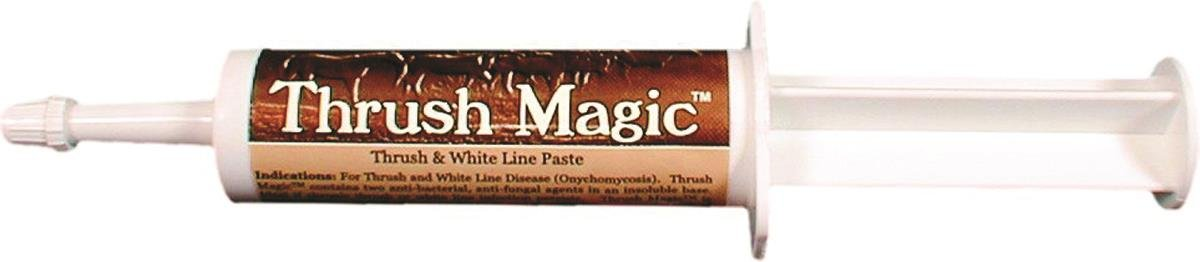 Animal Healthcare Labs - Thrush Magic Paste - 30cc Syringe by An Hlth (Image #1)