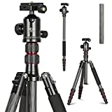 Carbon Fiber Tripod Kit 60'' Professional Portable Travel Tripod for Canon, Sony, Nikon, Samsung, Panasonic, Olympus, Kodak, Fuji, GoPro devices,Camera Compact and Video Camera, N3, Red